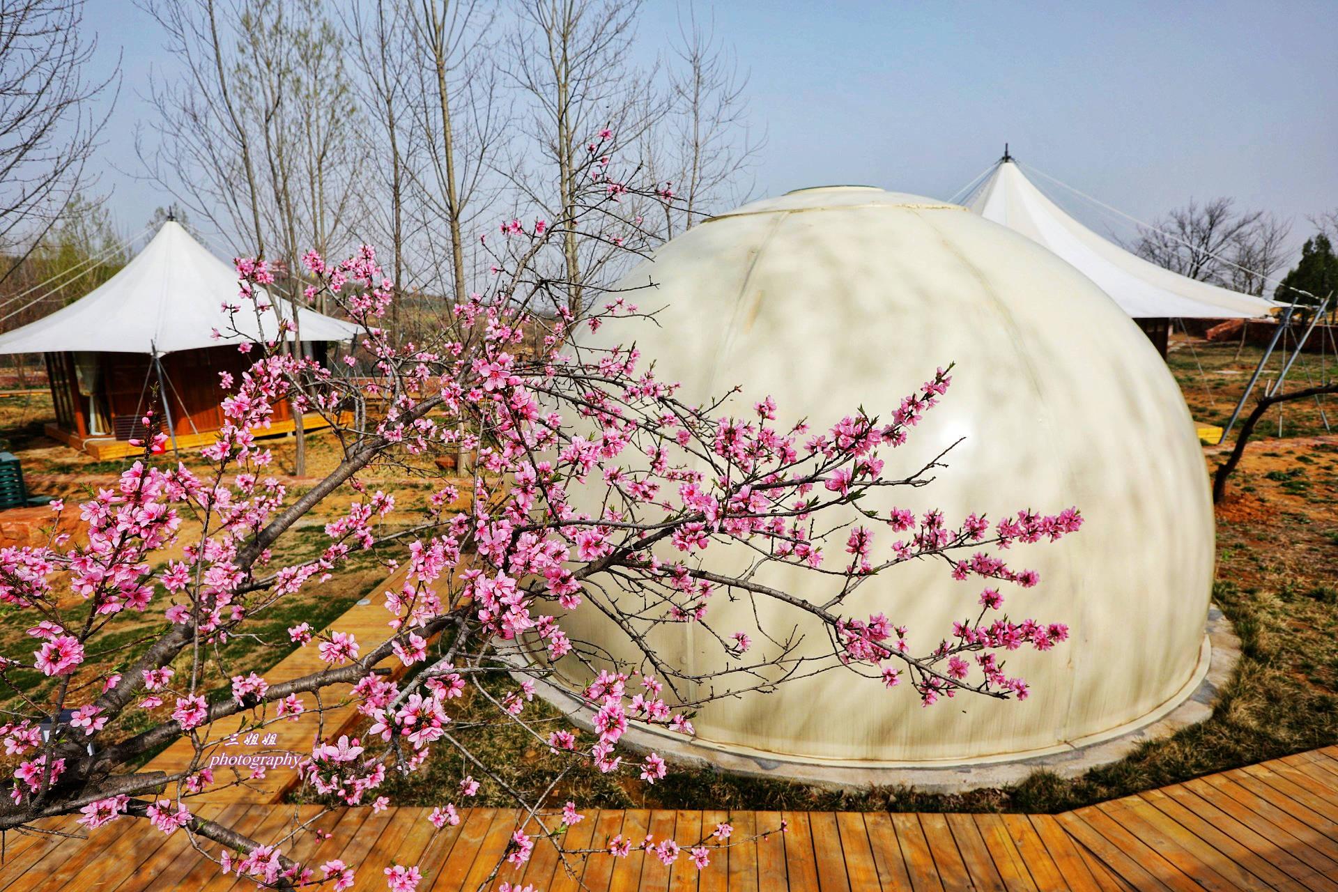 郑州春游好去处 伏羲山星空营地 圆一个看星星的美梦之旅