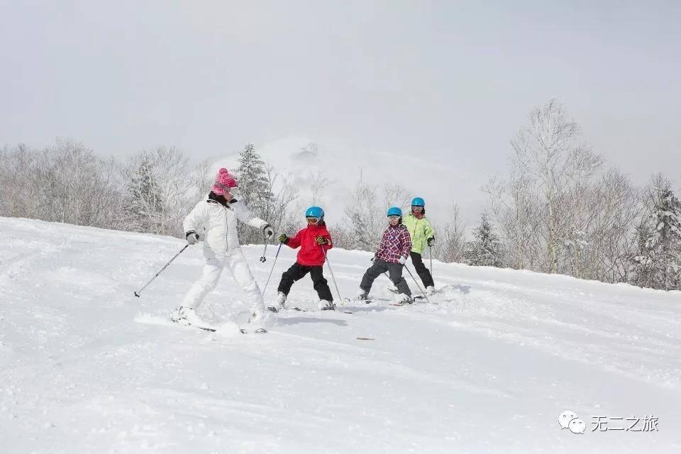 北海道的雪地里,藏着一帮大明星