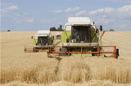 """农民要过""""好日子""""了?有好消息传来,今年开始这些东西都要涨价"""