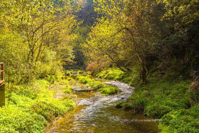 """黄山黟县有一处瀑布群,号称""""人间瑶池"""",充满了原始气息"""