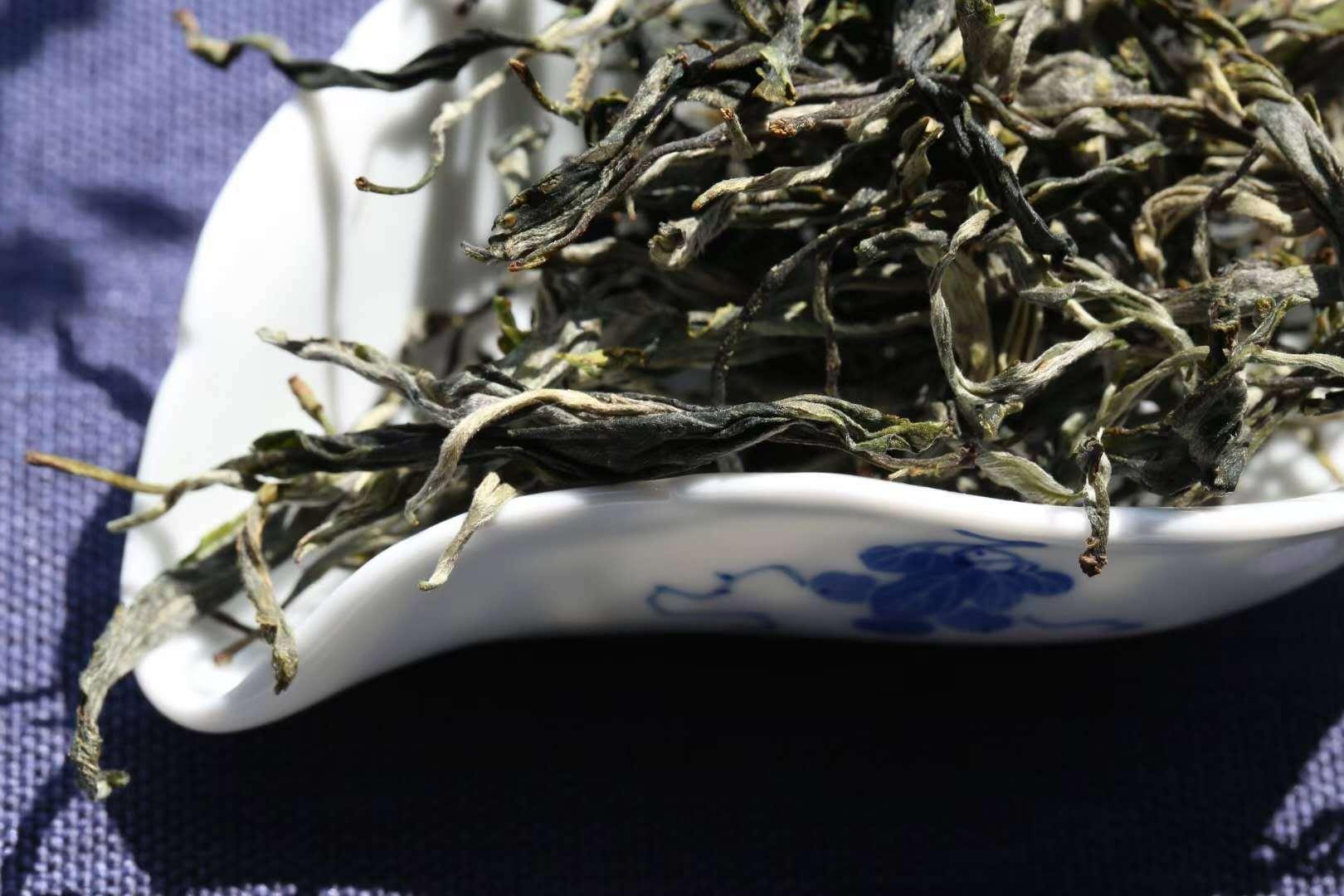 世界茶文化历史自然博物馆—景迈山