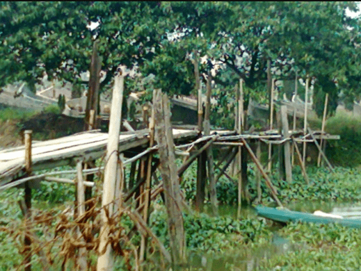 心理测试:你会选择走向哪个独木桥?测你这辈子能活多少岁?  第2张
