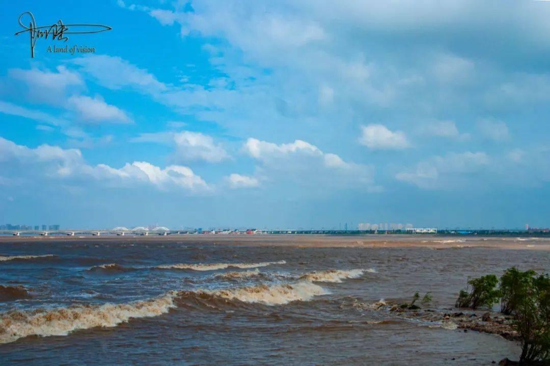 在杭州总能看见勇敢的弄潮儿,于钱塘江之中乘风破浪