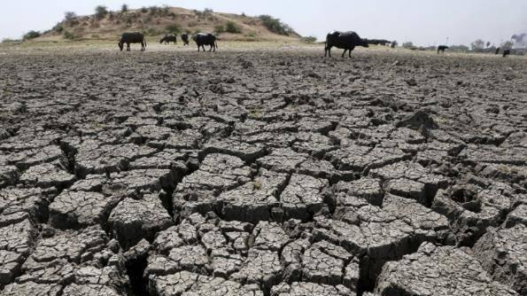 """印度自制的""""稻草空调"""",能助人们抵抗高温吗?300一台供不应求"""
