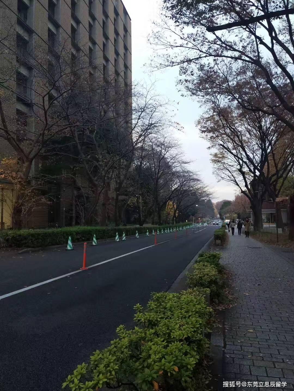 通往世界名校大阪大学有哪些条件?