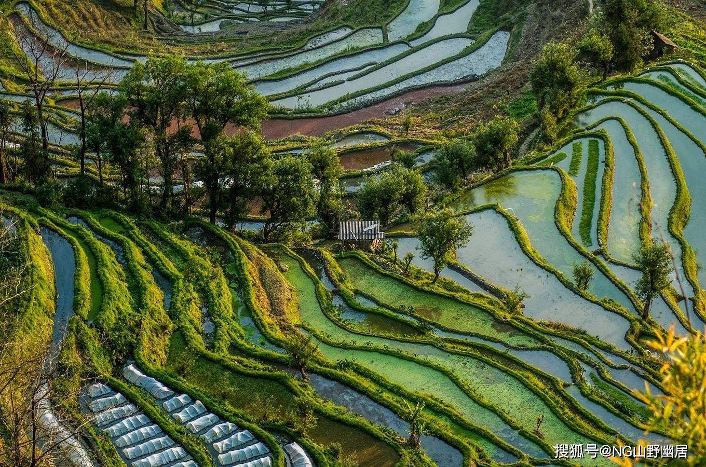 云南元阳梯田:国内最美农业观光区,被上帝打翻的调色板!