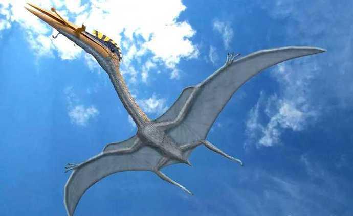 翼龙再生了?这种蜥蜴正在进化翅膀,已经可以在树林间滑翔hd7