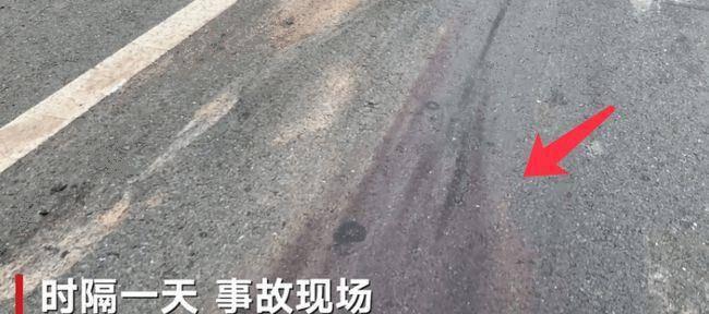 北京百达播种百年变百炼部门