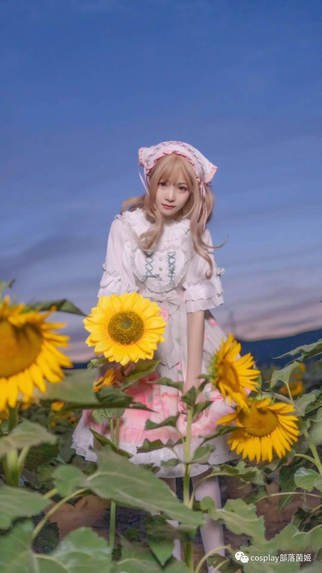 Lolita:我在这里等着你,你回来吗