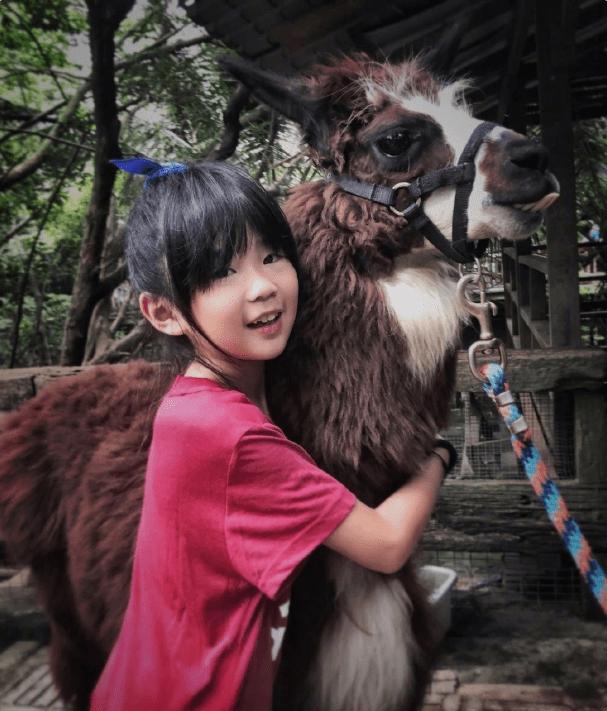 11岁曹华恩逆袭式长大眉目清秀越来越像妈曾儿时录综艺被嫌丑