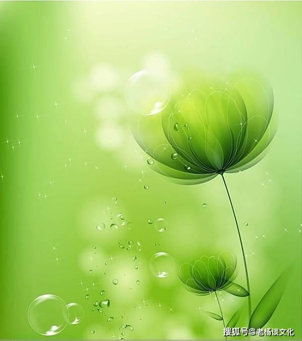 现实有内涵的人生感悟,句句碰触心灵,满满正能量