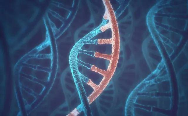 Nature深度综述:mRNA技术的开发策略与未来