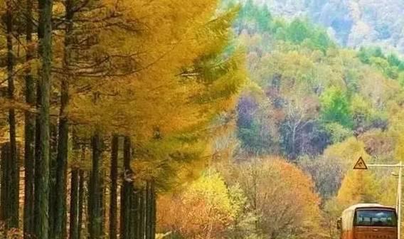 八条最美自驾路线,国庆中秋假期去旅行!