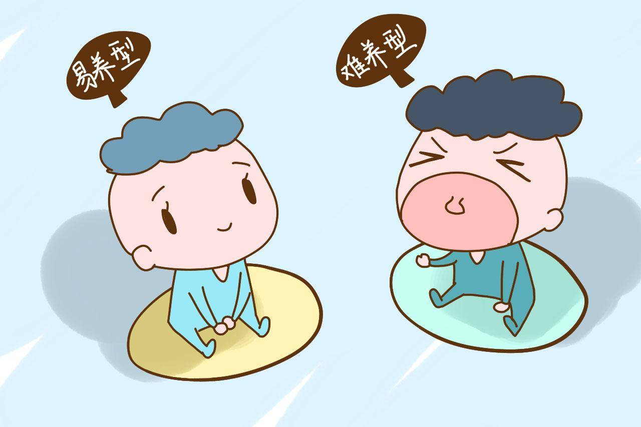 人的气质类型分为四种 心理学气质的四大类型