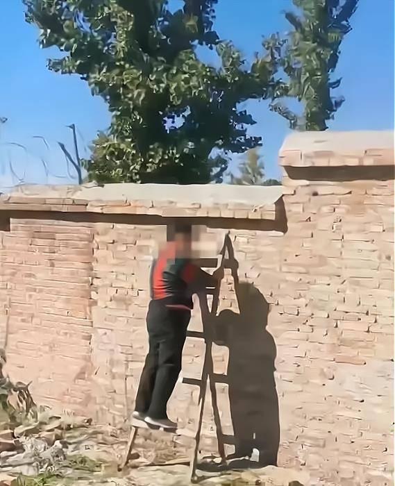 北京三名六十多岁的老人,组团翻墙进入果园偷苹果,网友:败坏风气