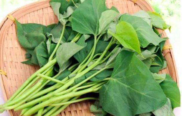 红薯叶好吃却不能乱吃,春季吃红薯叶有一大禁忌,了解一下吧