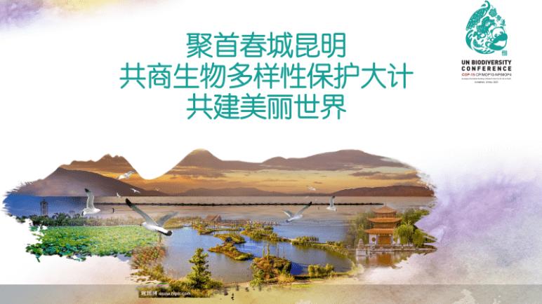 COP15生态文明,聚首春城昆明