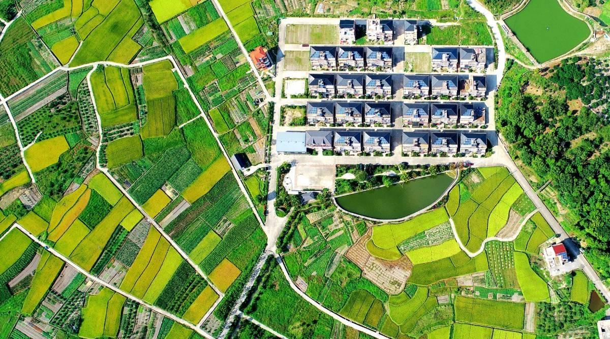新观察|李铁:应重视消费逆城市化现象