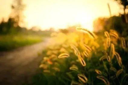 甫跃辉:希望我的文字能够照亮故乡僻远的高山大河,也照亮自己的生命
