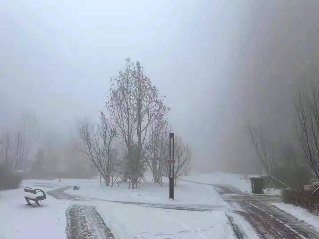 大雾红色预警!还有大雪+道路结冰,降温1