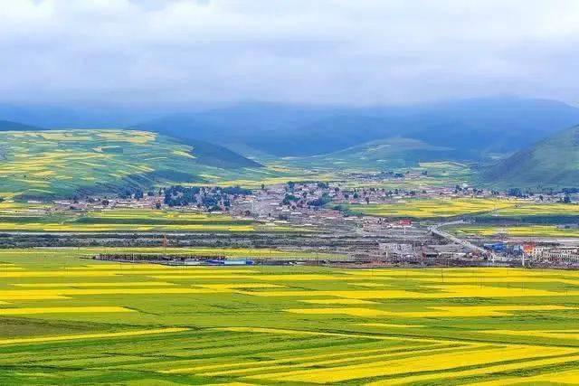门源县人口_4月去门源回族自治县哪儿最好玩 门源回族自治县旅游景点大全 门