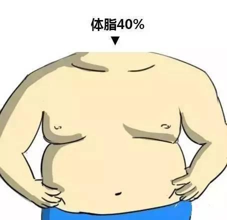 拉菲8开户:体脂率降到多少,才能看到清晰的腹肌?