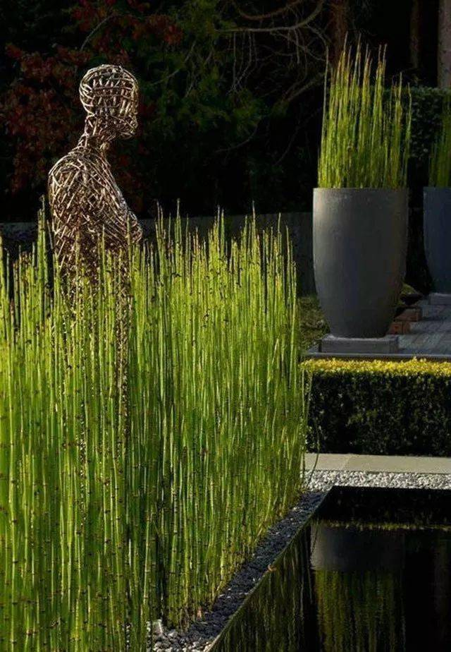 拉菲2登录 抚玩草代表的质朴和自然式景观 是水石对将来景观的一个摸索