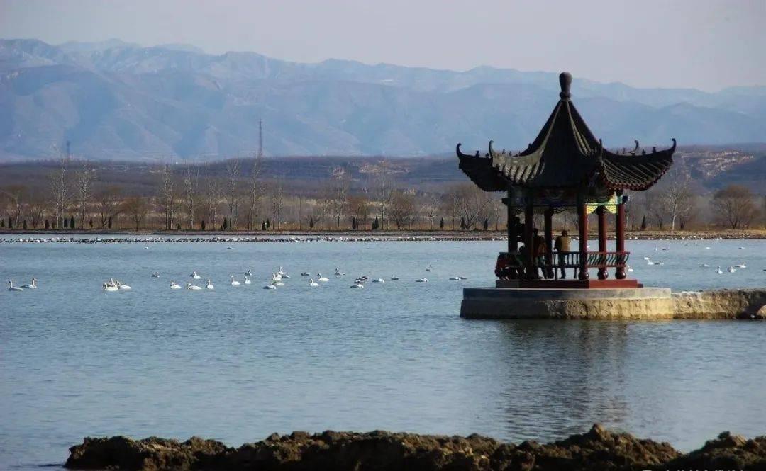 @山西人,开始计划春游去哪儿了吗?这8大湿地公园值得一游~  第10张