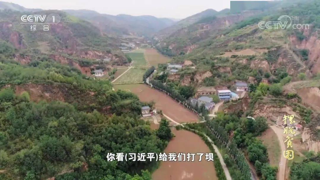临朐县蒋峪镇西牛河村人口_人口普查