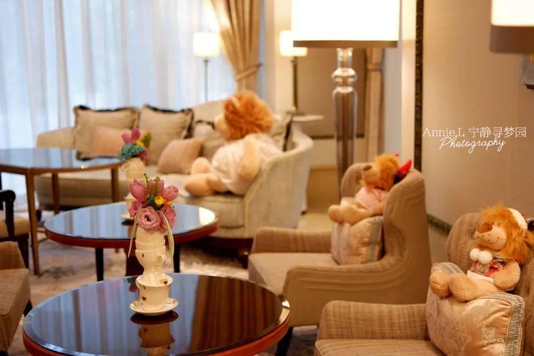 【下午茶】与狮子的约会