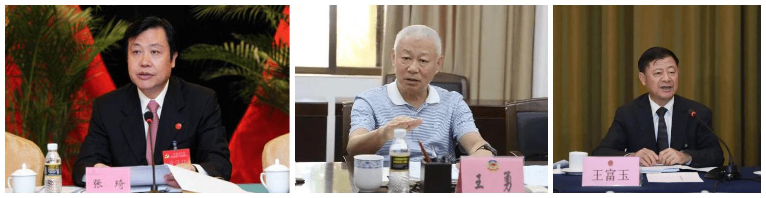 """牛年首""""虎""""王富玉,已退休3年,十九大以来贵州第三""""虎"""""""