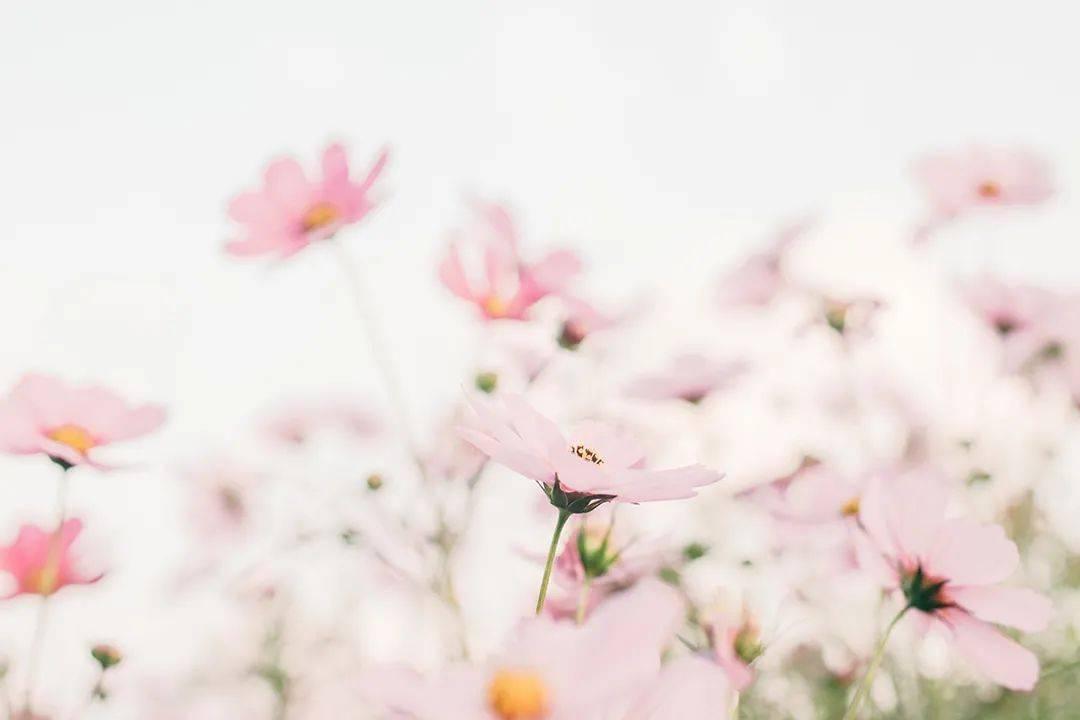 【春节期间写的信】我希望我的心里能永远平静——疼痛内科的李志刚医生