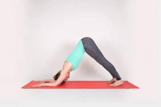 16个简单的瑜伽体式,适合春季每天练习!_胸腔