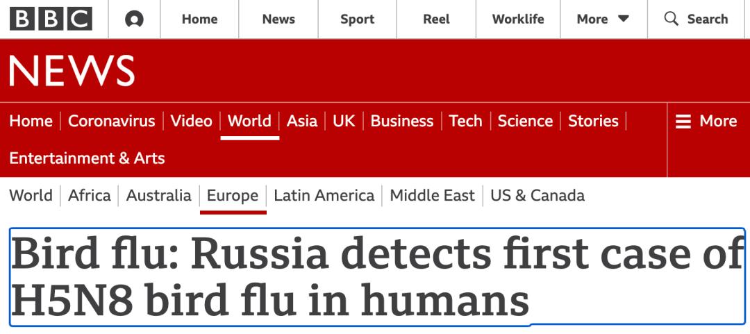 人类熏染禽流感H5N8病188金宝搏app毒,会不会造成下一个大流