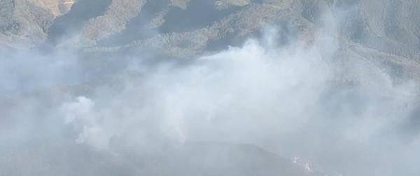 日本枥木县发生森林火灾 焚烧四日仍未扑灭
