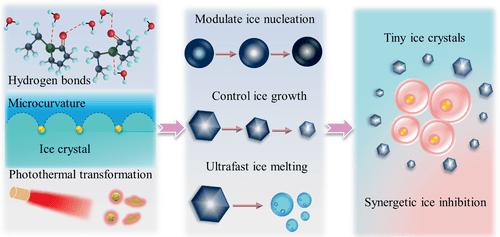 中国科技大学:活细胞深低温冷冻保存中的协同抑冰首次实现
