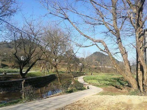 屯光镇篁墩村:千年古村风貌整治焕新颜