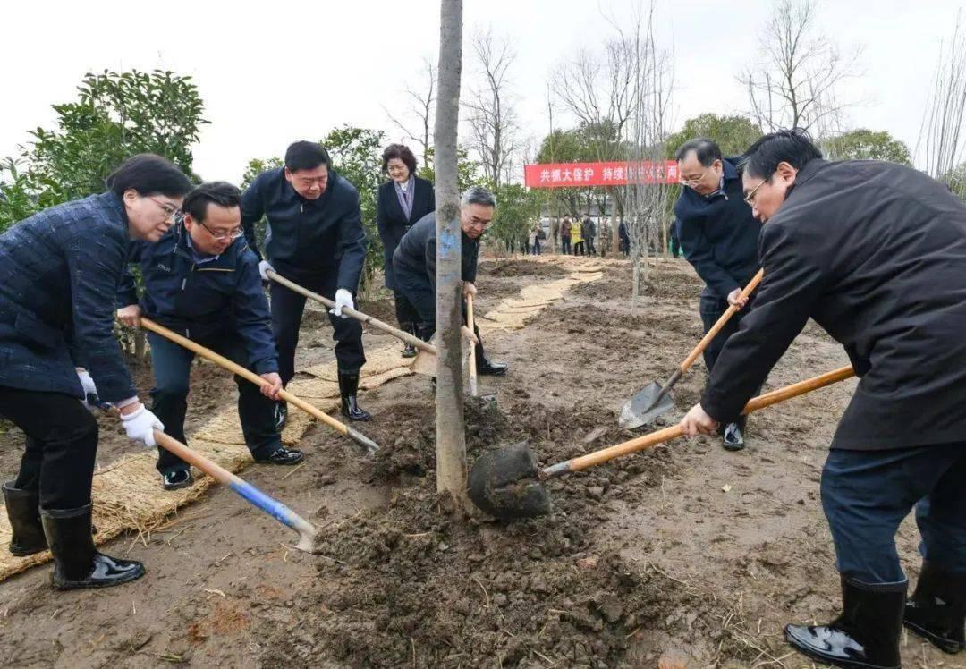 今天,娄勤俭吴政隆等参加义务植树活动