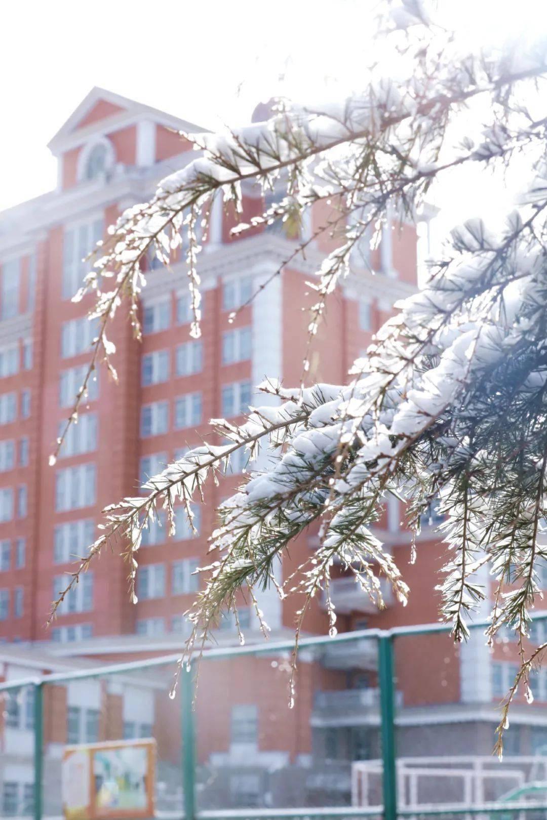 2021年的第一场雪,是思念天空的感觉