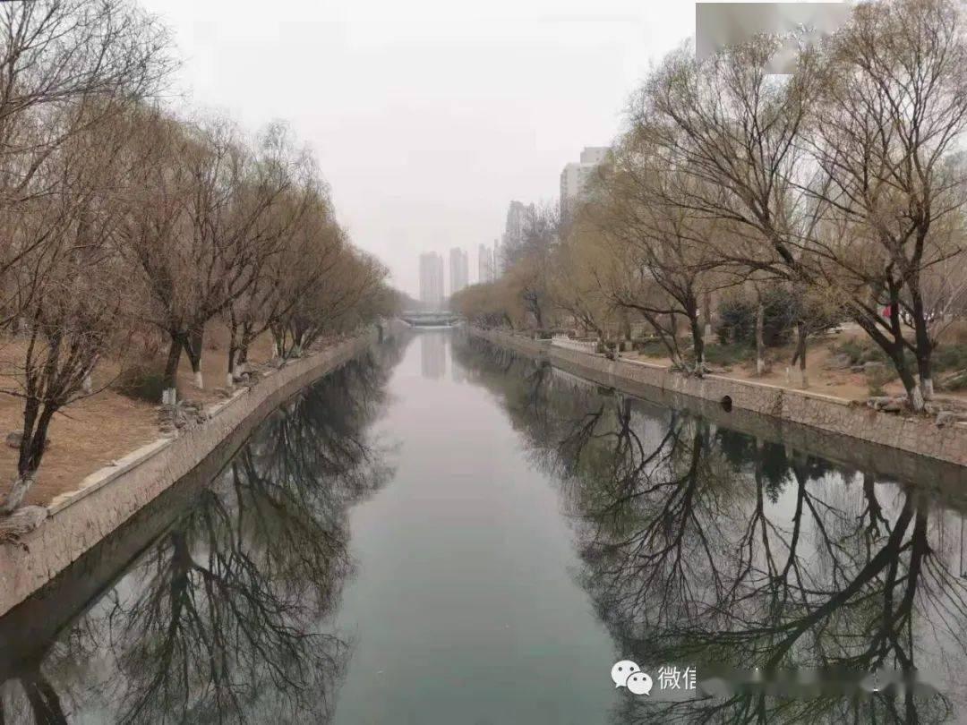 张明|评2021年两会《政府工作报告》