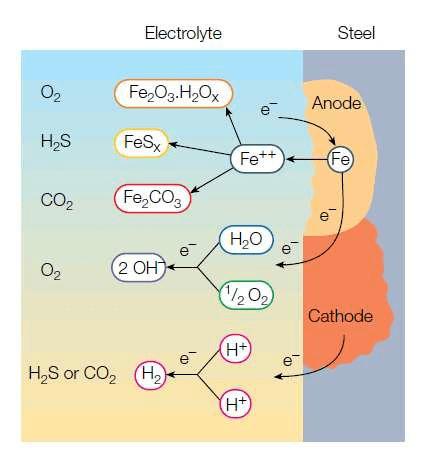铁离子的检验原理_离子交换膜的工作原理