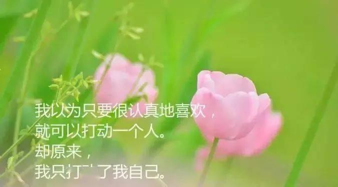 笑对生活,善待人生,便好