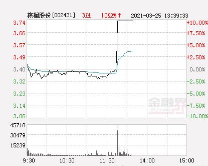 快讯:棕榈股份涨停 报于3.74元
