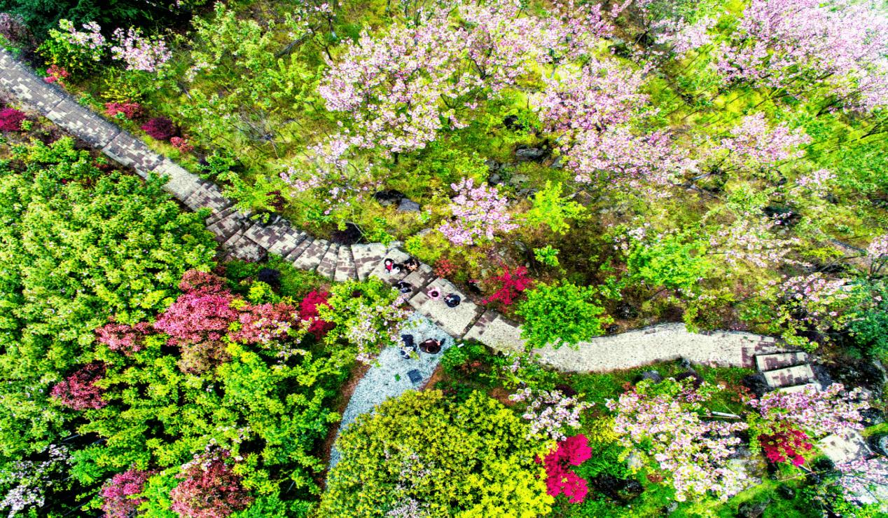 春季出行哪里去耍?成都推出十条春季旅游线路