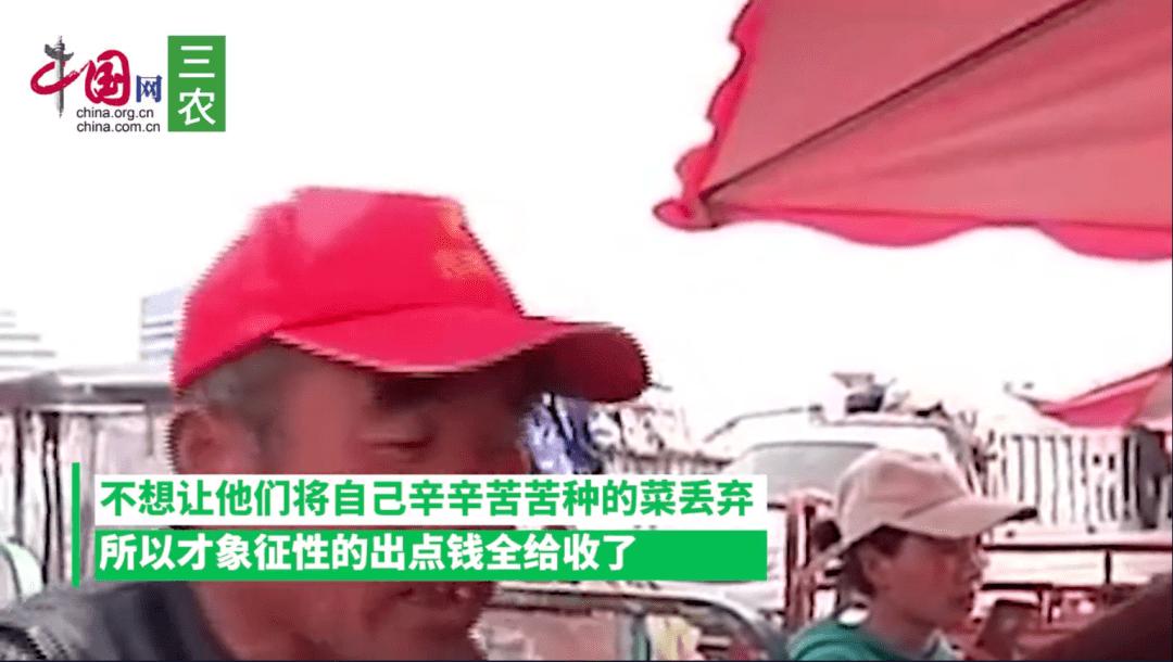 农民卖菠菜,1300斤15元,菜贩:行情就这样,没办法  第5张