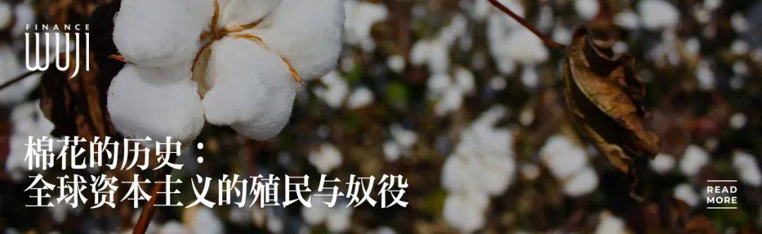 天顺娱乐总代-首页【1.1.1】  第11张