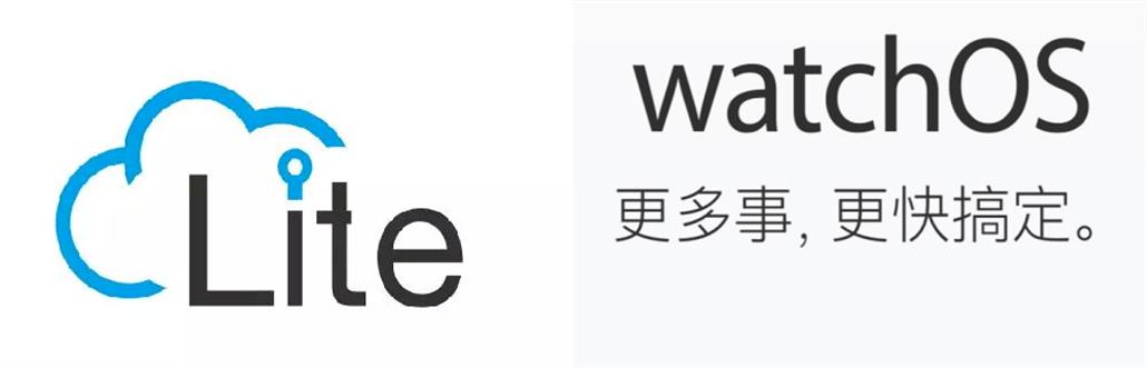 支持国产OS还是Watch OS?华为GT2与Apple Watch S3蜂窝版如何选