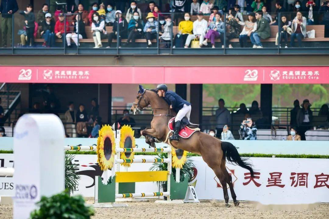 天星调良马术传统大赛引领马术生活时尚 携《骑马看中国》塑造马产业品质生态
