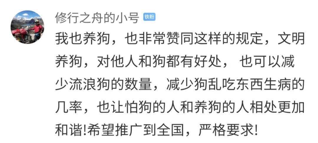 5月1日起,遛狗不牵绳,违法!