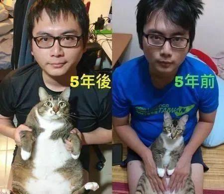 你们经历了什么?1人1猫就这样一起幸福肥!